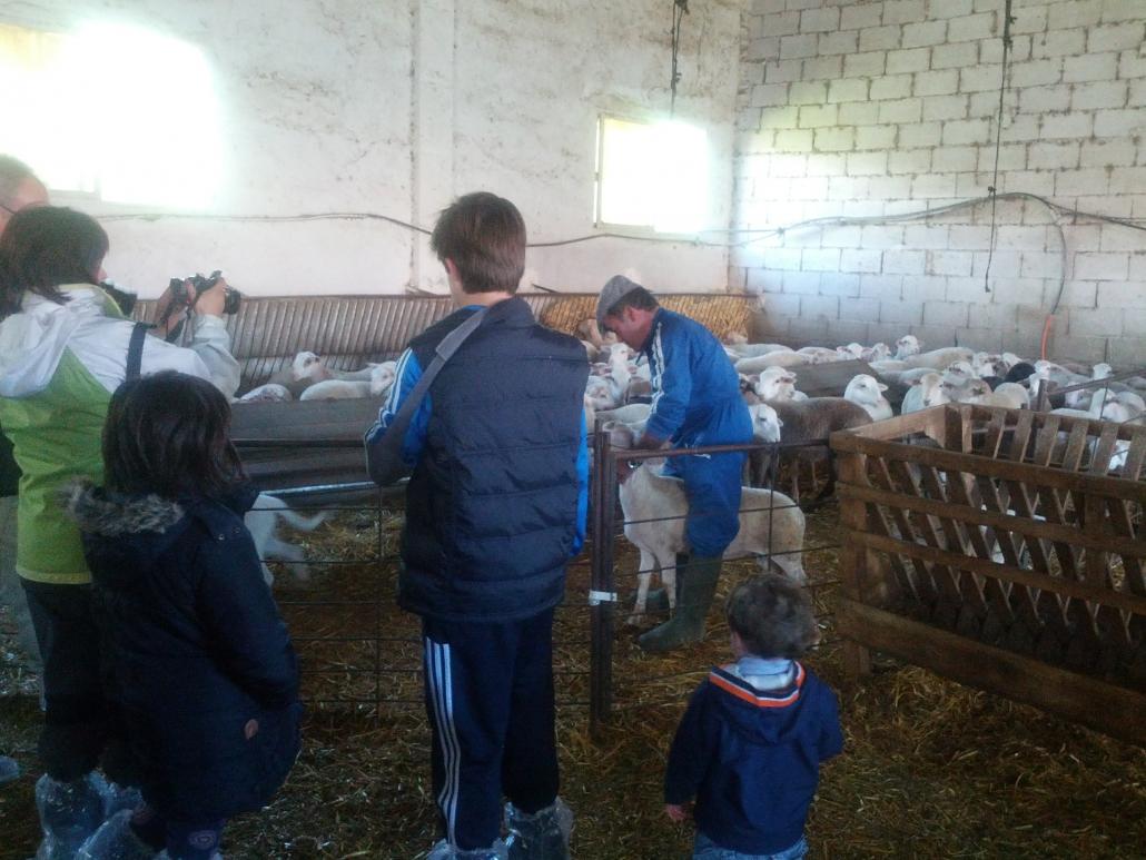 En la granja de Santiaga
