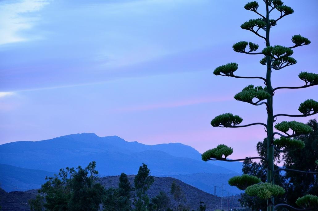 Una tarde de verano en un lugar de la Sierra de Los Filabres